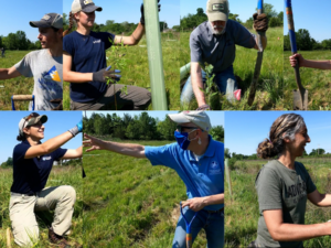 Partnerships and trees changing water quality in Lancaster County